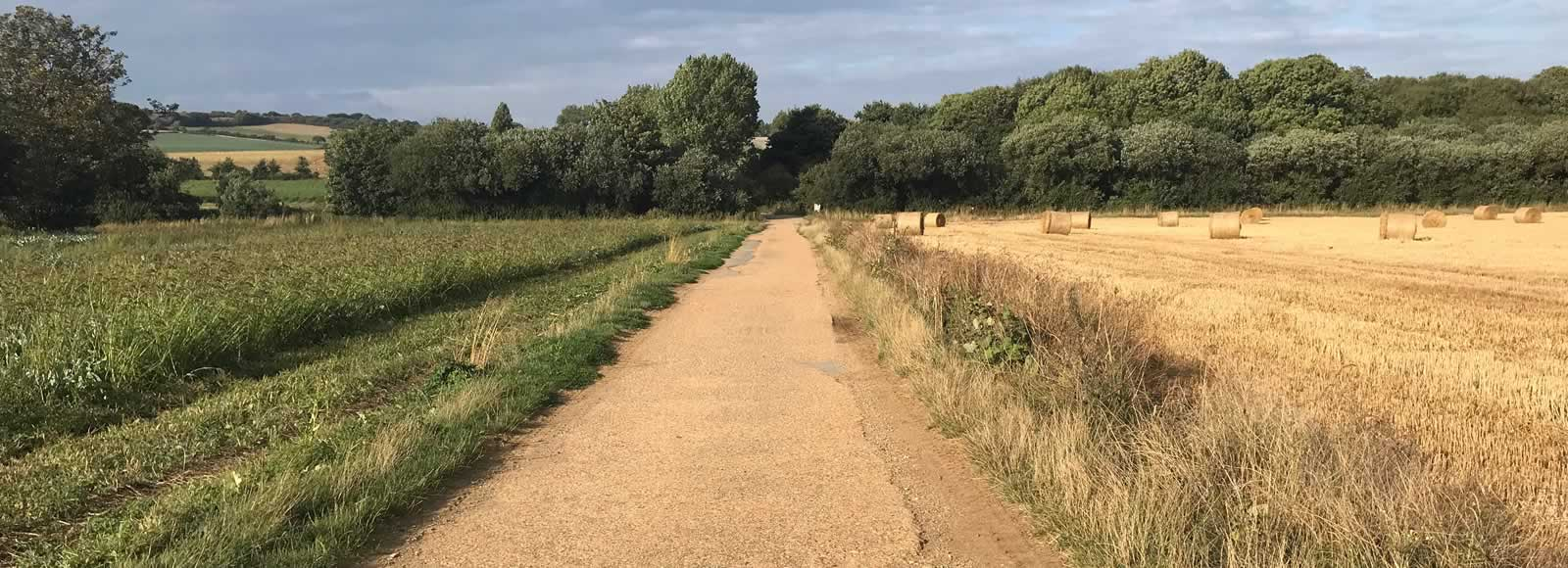 Cycle track through fields near Blackwater.