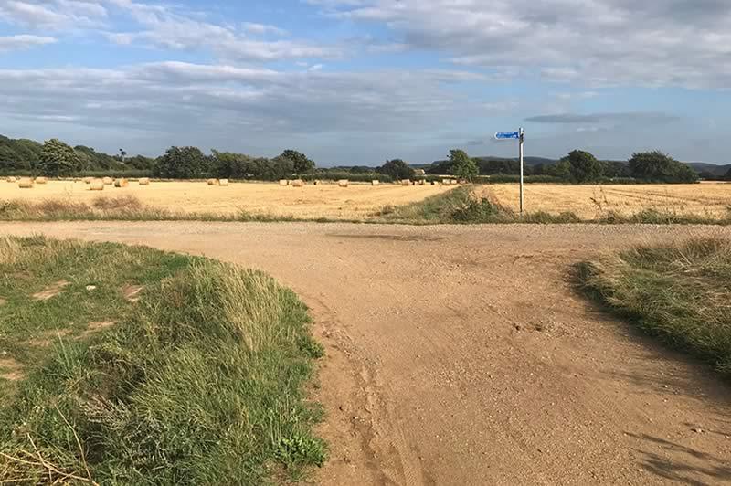 Fields near Merstone