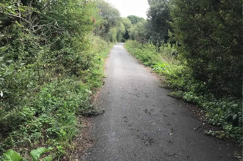Route between Langbridge and Alverstone