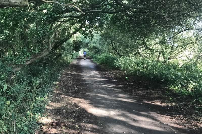 Cycle track near Blackwater